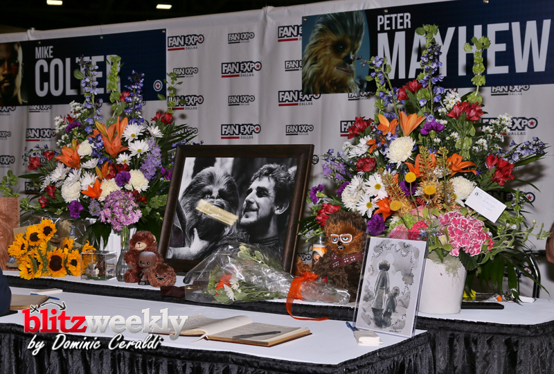 Fan Expo May 19 (34)