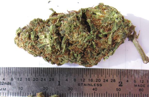 Marijuana is a sensitive subject in Texas... Photo Courtesy: Raquel Baranow