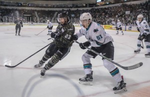 The Texas Stars came out on top 8-5 on Saturday earning a playoff berth. Photo Courtesy: Jeff Cantrell