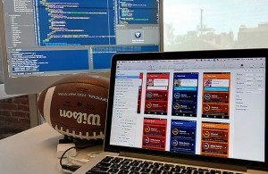 Several web sites offer advice each week for fantasy football, but knowing which ones will help can make or break your season. Photo Courtesy: ibmphoto24